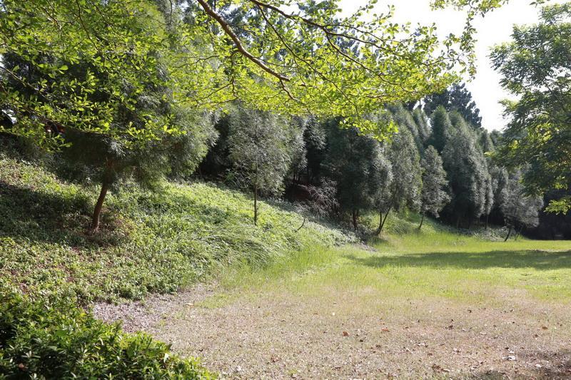 校園景色4